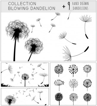 Blowing dandelion illustrations