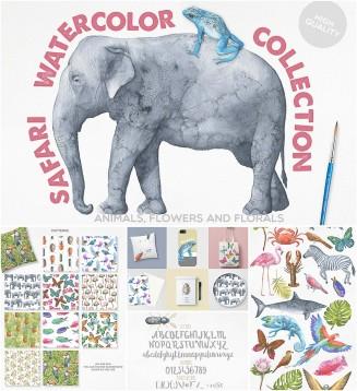 safari animals illustration and font