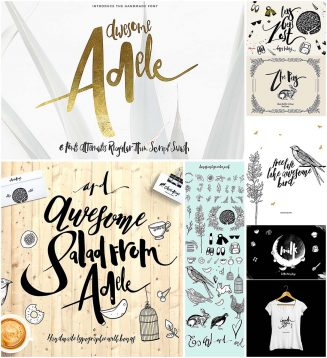 Adele Awesome hand darwn font and illustrations