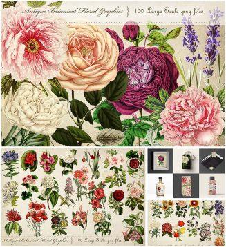 Antique botanicals big bundle