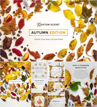 Custom scene Autumn edition mockup