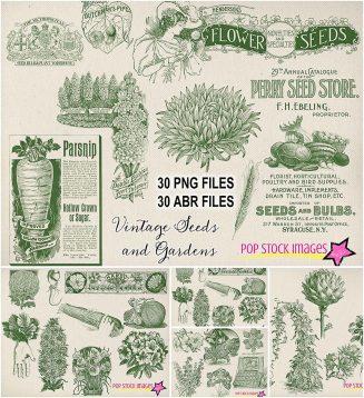 Garden plants and seeds vintage graphics set