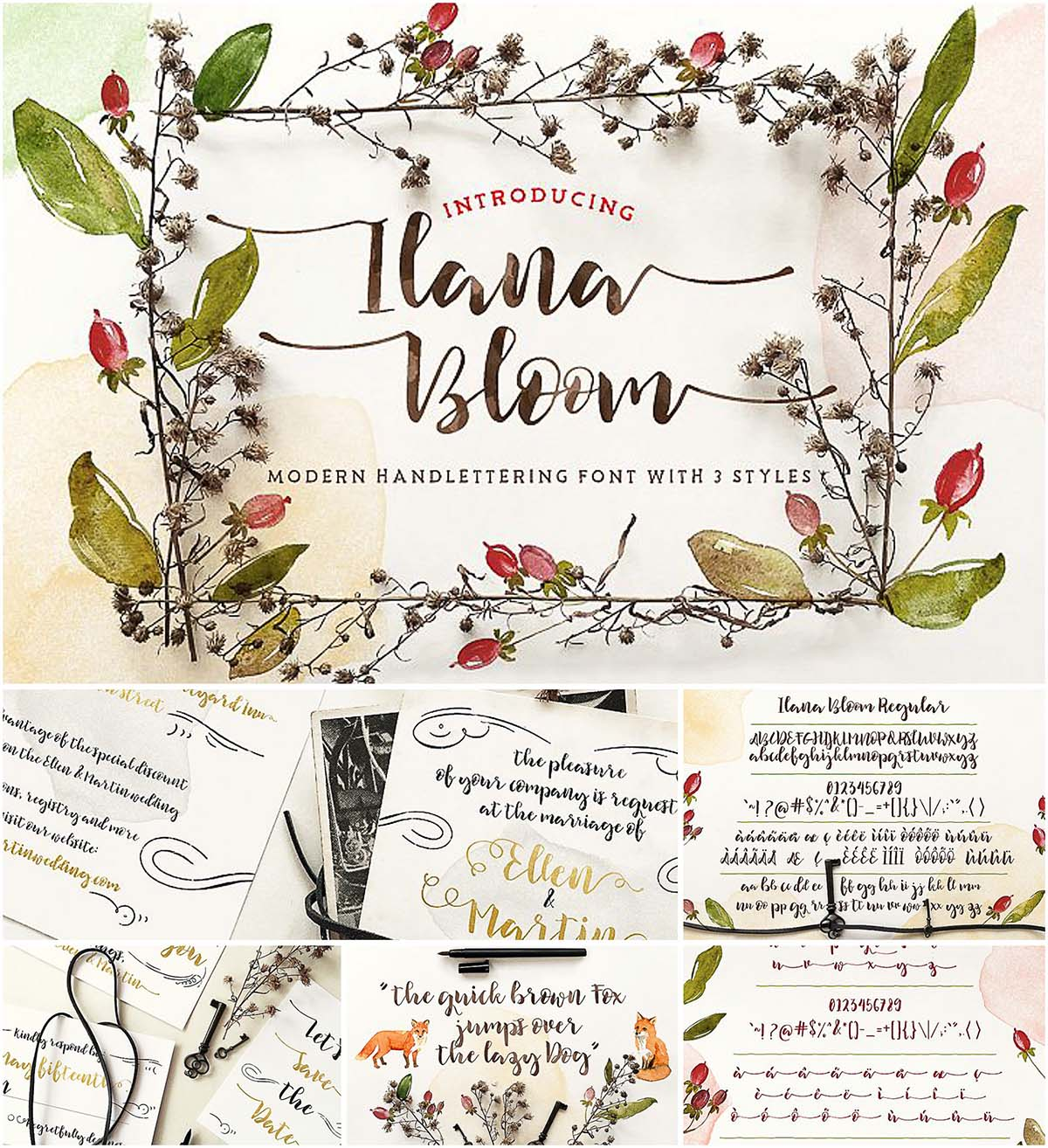 Ilana bloom brush script