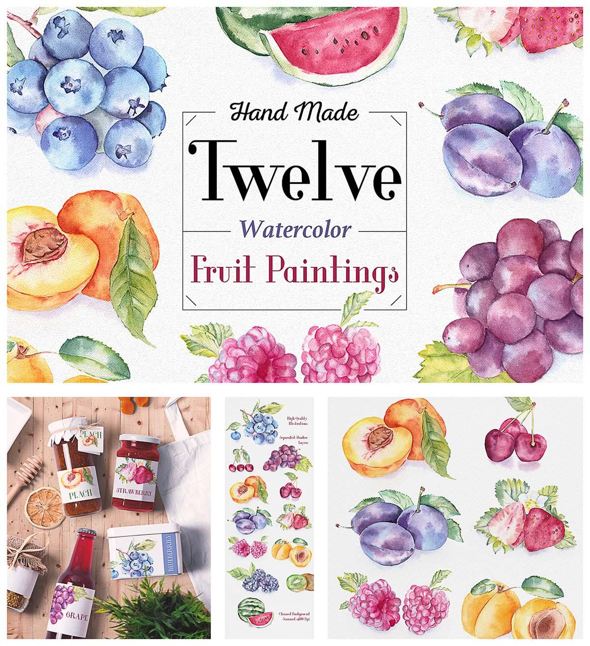 Fruit watercolor illustrations