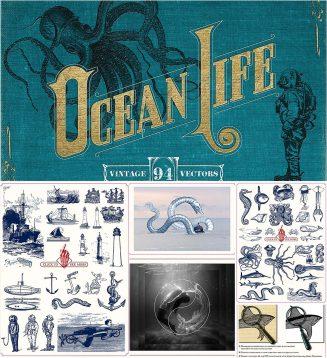 Nautical vintage illustrations
