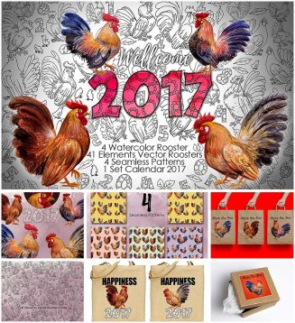 Watercolor rooster family 2017