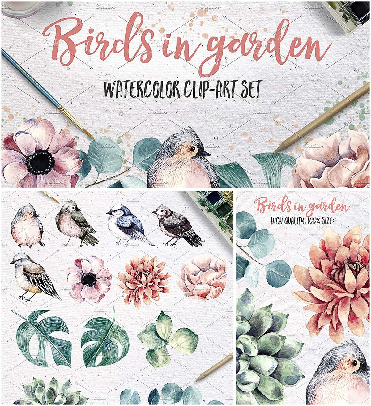 Watercolor birds and plants set
