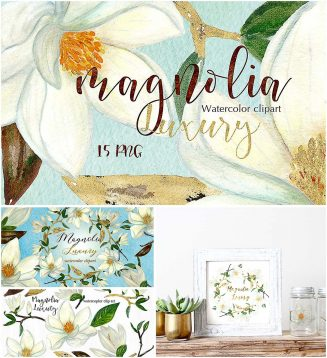 Magnolia hand drawn clipart