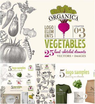 Organic vegetable logo set