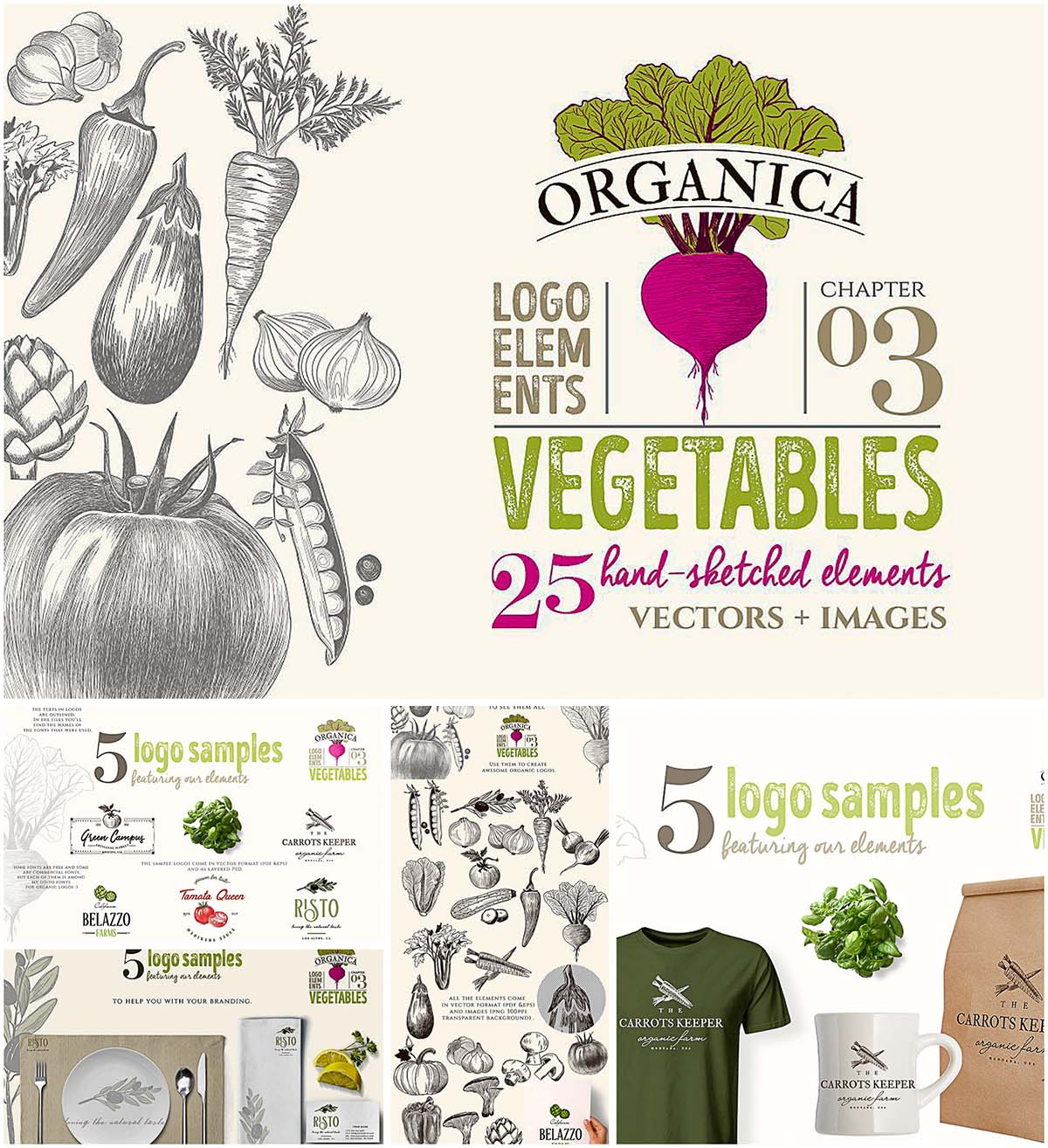 Organic vegetable logo set