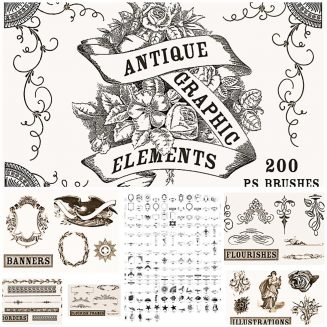 Antique brushes collection