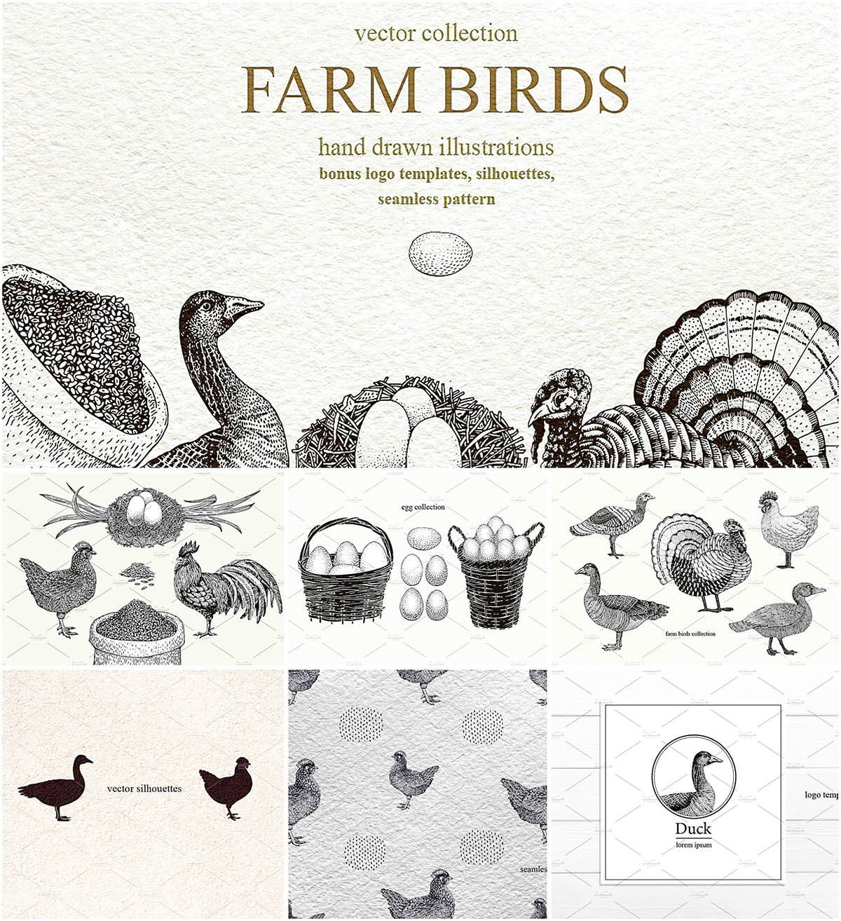 Farm birds vector set