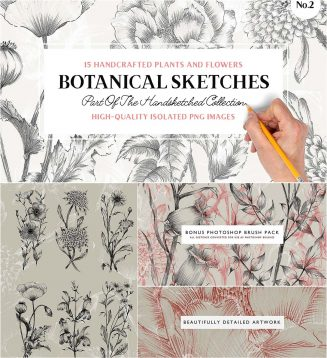 Hand painted plants and flower sketches
