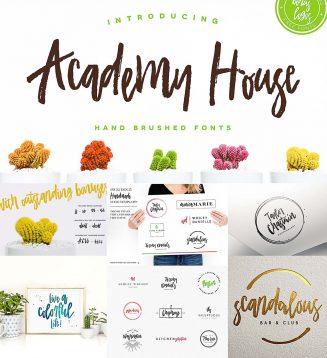 Academy house with logo
