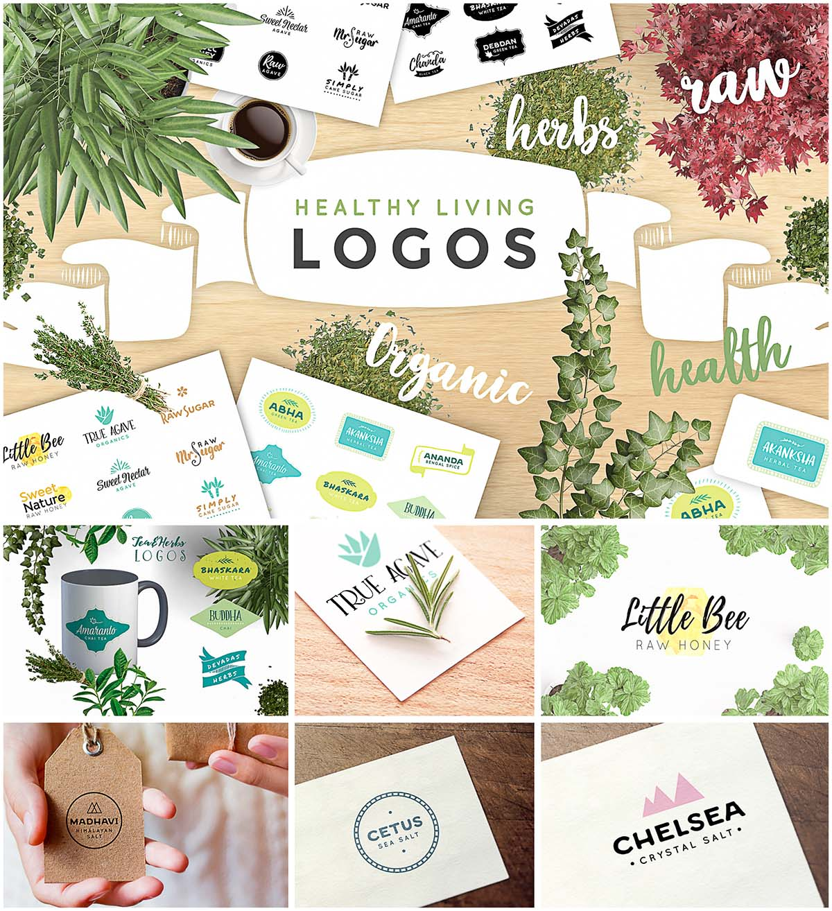 Organic healthy logo set