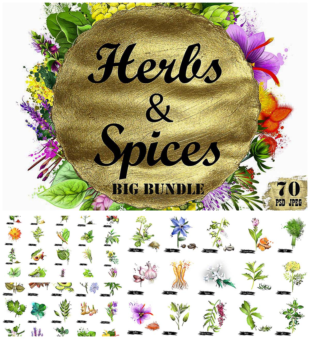 Herbs and spices bundle