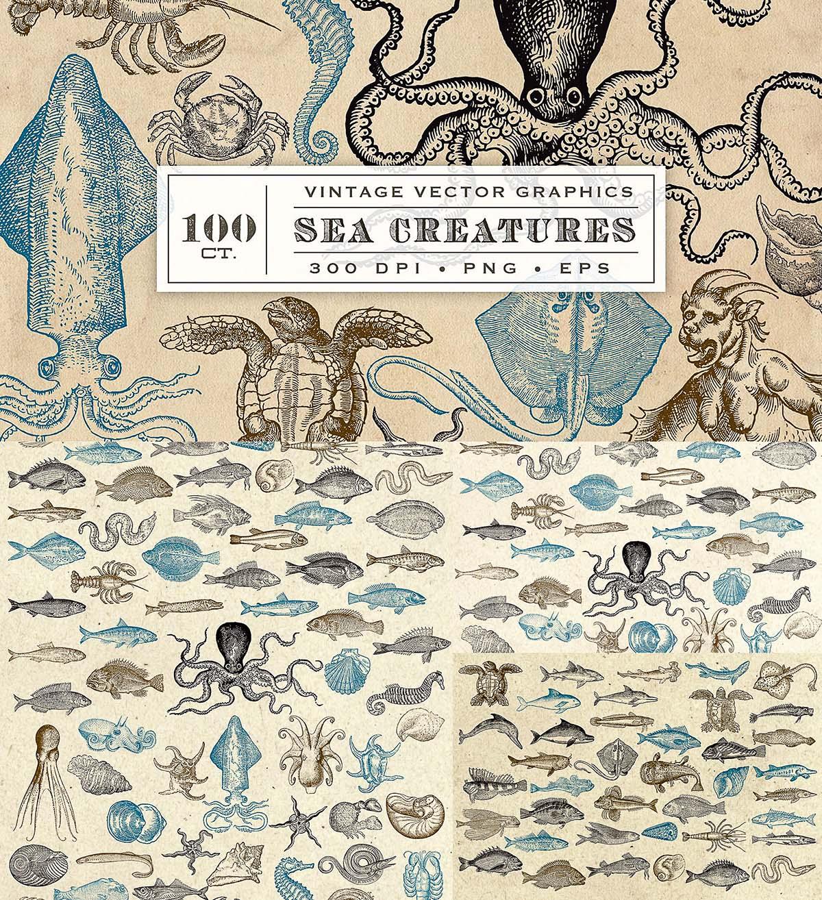 Antique sea creatures illustrations